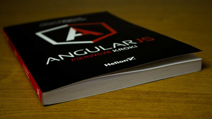 What Angular JS is made for?